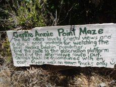 Gentle Annie Point Maze